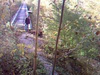 Coming off the Abandoned Tressel