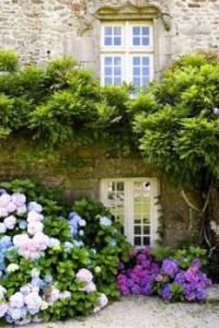 Beautiful doors, windows, stone and garden