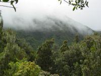 Fog on the Mountains - Hawaii