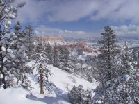 Winter Storm at Bryce Canyon