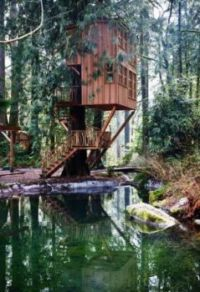 dream-tree-house-3