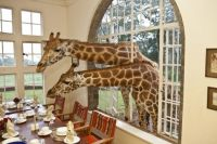 Giraffe Manor 2