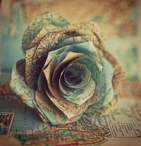 Geographic Rose