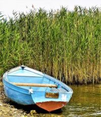The Solitary Boat