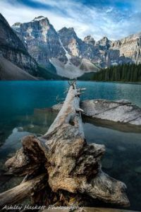 Canadian Rockies Moraine Lake (smaller)