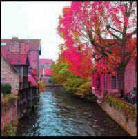 ~Brugge, Belgium~