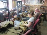 Hand Rolled Cigars - Ybor City