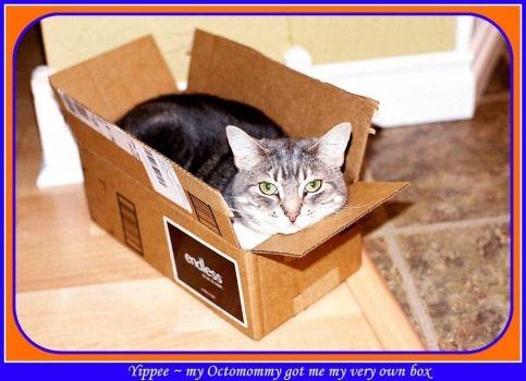 Gotta have my own box