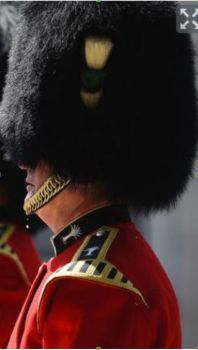 A bead of sweat falls from a member of The Queen's Guard