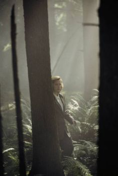 Gillian Anderson as Dana Scully. In some woods. While not at all dressed for it.