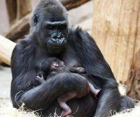 Shinda and her baby