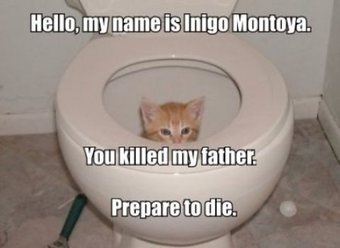 Hello my name is Inigo Montoya...