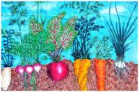 Wall Mural of Growing Root Vegetables in the Earth