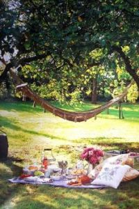picnic and a hammock