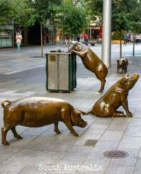 Bronze Pigs, Rundle Mall, Adelaide, South Australia