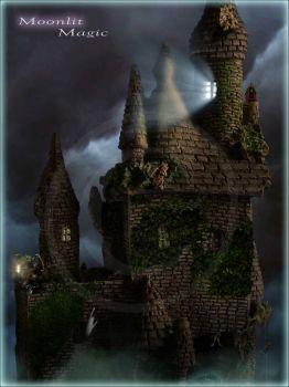 Bn D'Longley Castle Closeup (Ex. Large)