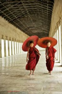 Young Monks in Burma