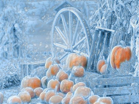icy pumpkins