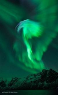 One More Aurora