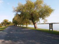 Seneca Lake View
