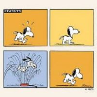 Cooling off, Snoopy Style!