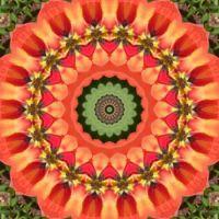 kaleidoscope 322 orange and green large