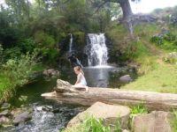 Waitangi Falls New Zealand