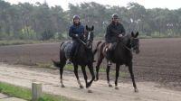 paarden en ruiters