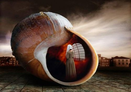 2  ~  'Living in a shell.'