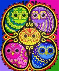 All About Owls Series