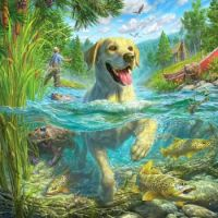 Fish and Dogs #3