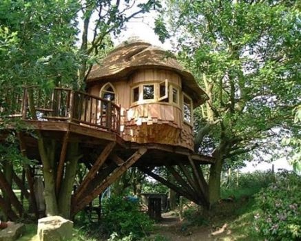 Can't you just tell? I would love a tree house!
