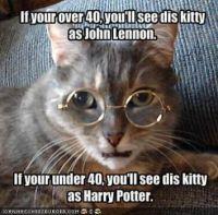 John or Harry