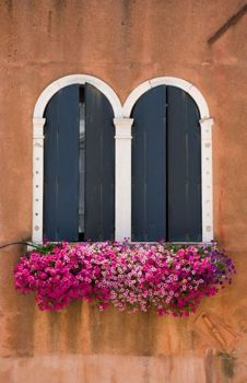 Arched Windows With Beautiful Flower Box