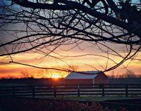November-sunset-Shelby-County-Kentucky220x1743