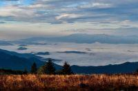 Grassy Ridge Bald - Roan Highlands NC