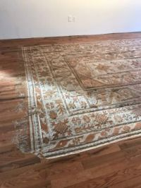 When you can't afford the oriental rug of your dreams