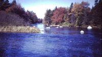Roseway River, NS