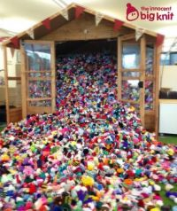 the innocent big knit