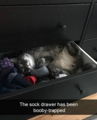 The sock drawer ....