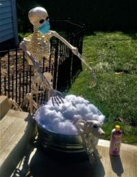 Skeleton Washing His Dog
