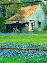 Old barn in Texas