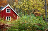 Red house in autumn woods
