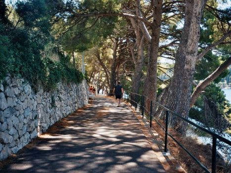 Taking a shady stroll down to Cavtat - Croatia