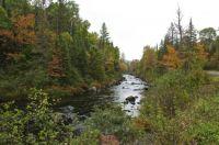 Fall Color - Peskeekee River