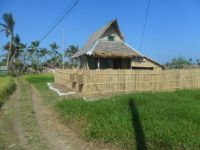 Bahay kubo / small house in Philippines