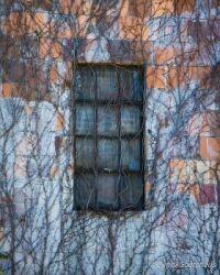Decay - Window