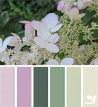 7_22_Color_Nature_f_