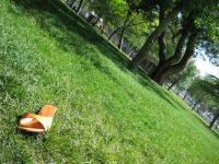 Orange shoe in grass