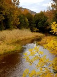 Beaver Creek in Arizona